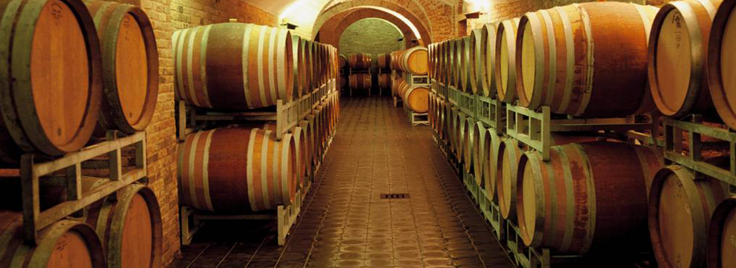 Gaja Single vineyard Barbaresco Carousel Web Banner2.png