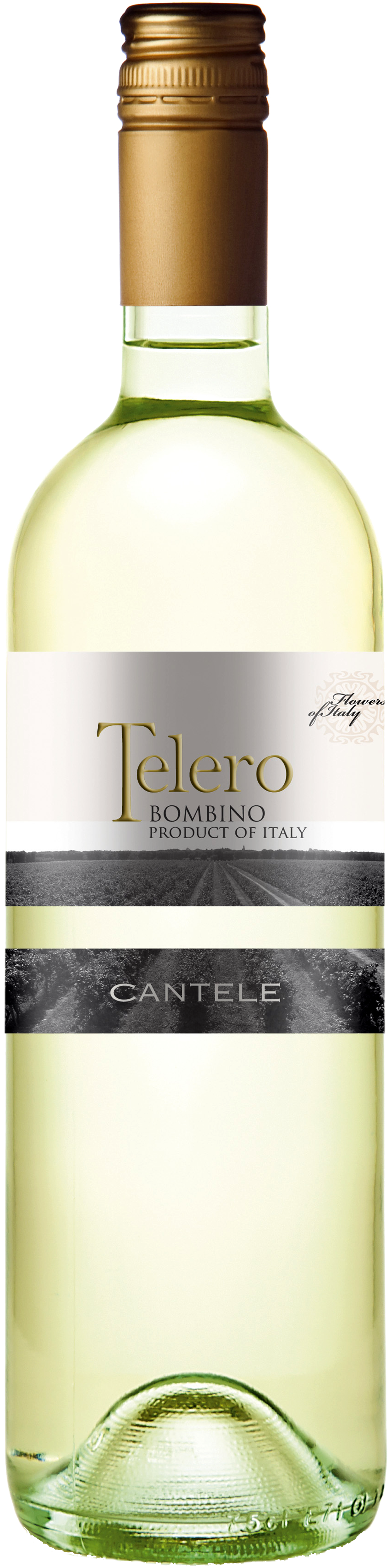 Image of product Telero Bianco (Bombino)