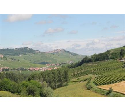 Piedmont: one region, thousands of expressions Part I
