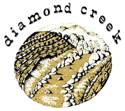Diamond Creek: A story of success amid the anguish of 2017