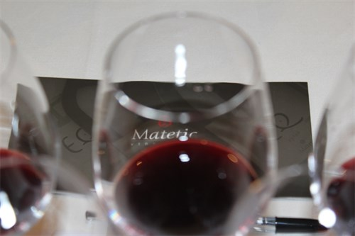 Matetic Logo And Glasses (2)